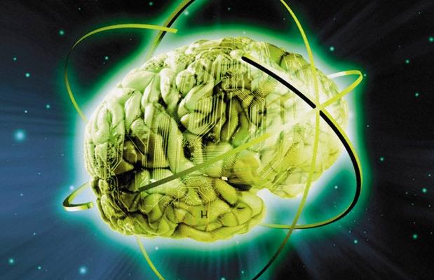 Cervello - Brain