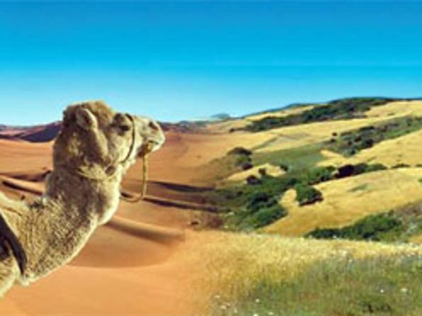 Il-Marocco-un-paese-naturale-2