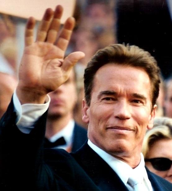 Arnold Schwarzenegger, sostegno a favore della legge sulle armi